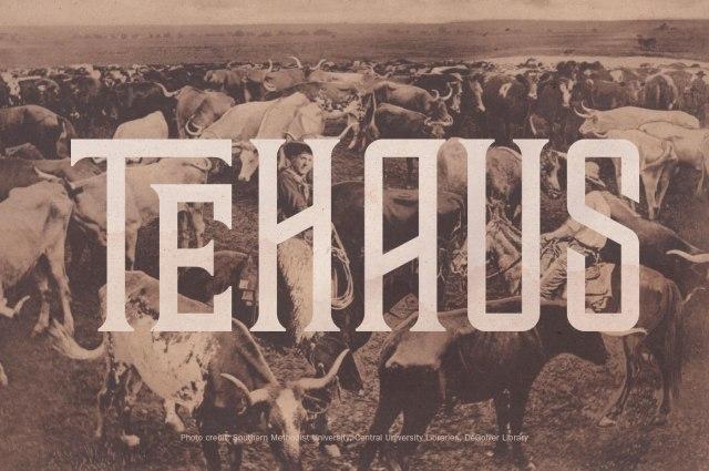 TEHAUS-01